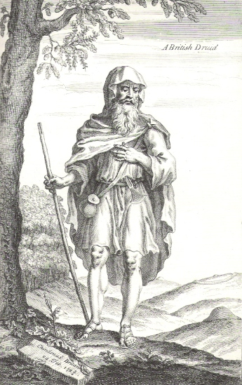 Image result for druids